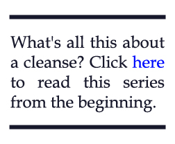 cleanse pullquote