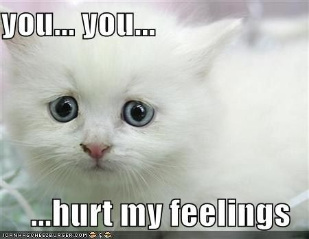 hurt feelings cat