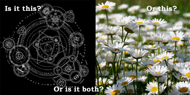 chaos is daisies